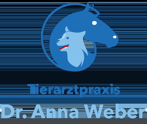 Dr. Anna Weber